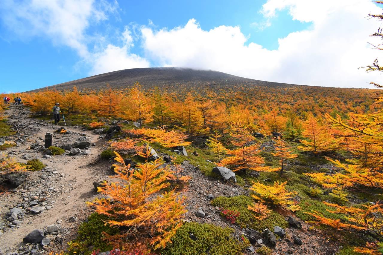 浅間山(前掛山)紅葉登山