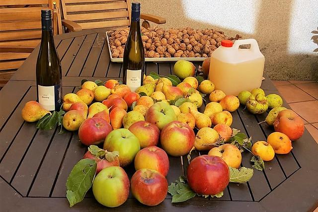 Pfalz 2018 ... Streuobstwiesen-Apfelkuchen mit Streuseln ... fotografiert und gebacken von Margit H