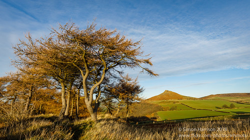 Roseberry Topping from Gale Rigg | by srhphoto