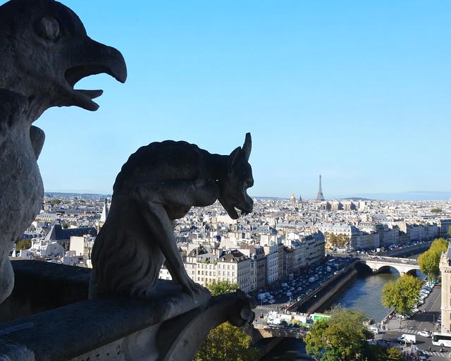 Vistas de París desde las torres de Notre Dame