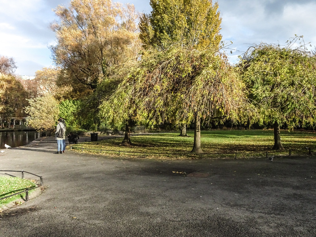 ST. STEPHEN'S GREEN IN AUTUMN 013