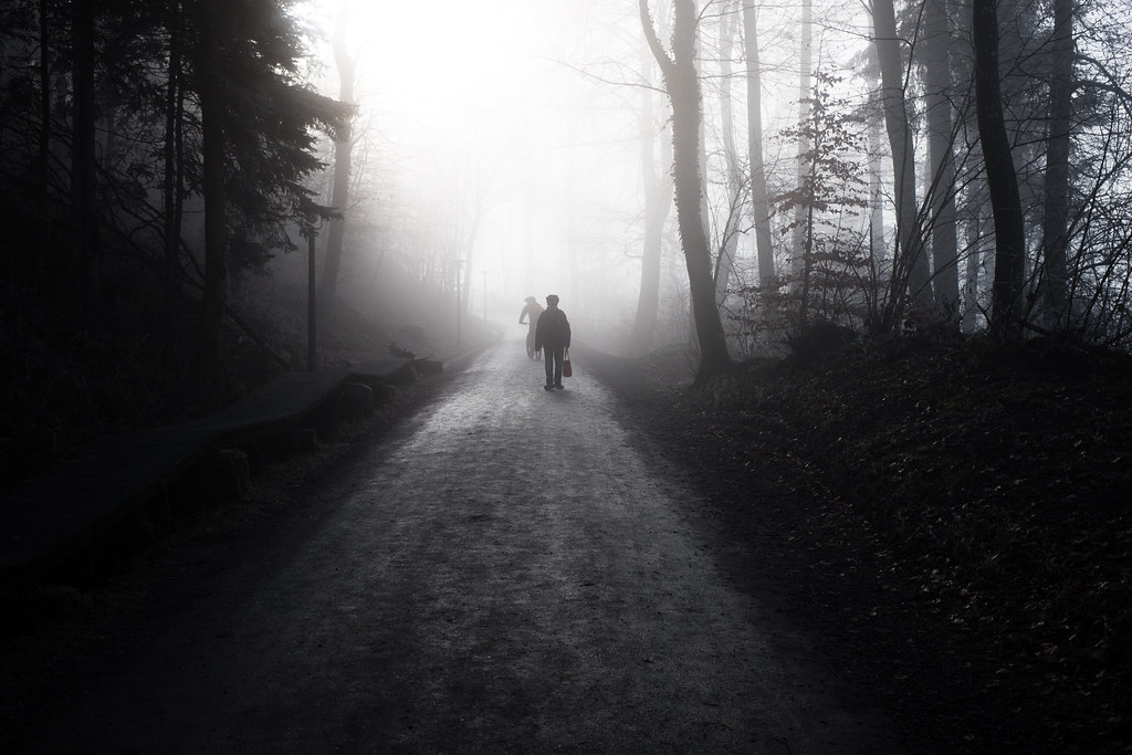 Shadows in the Mist