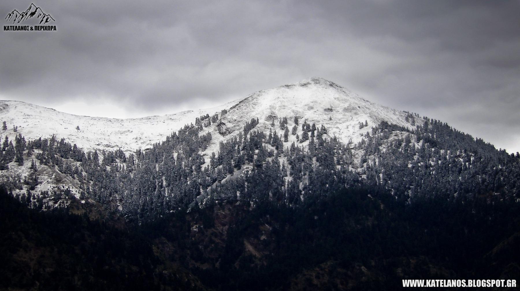 κεδρος παναιτωλικου ορους πρωτα χιονια 2018 χειμωνας