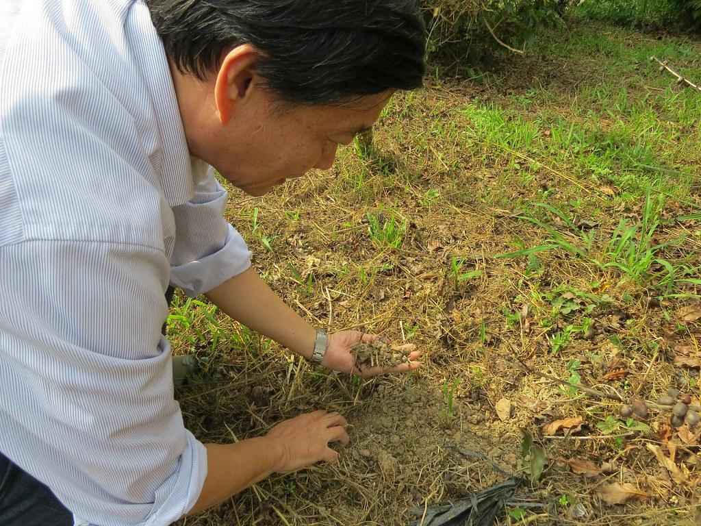 土壤是有機農場的根本,有機農民除了確認土壤是否符合環境保護署《土壤污染管制標準》食用作物農地之重金屬管制標準值,種植過程也應持續確認土壤狀況。