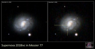 Supernova 2018ivc in Galaxy M77 | by The Dark Side Observatory