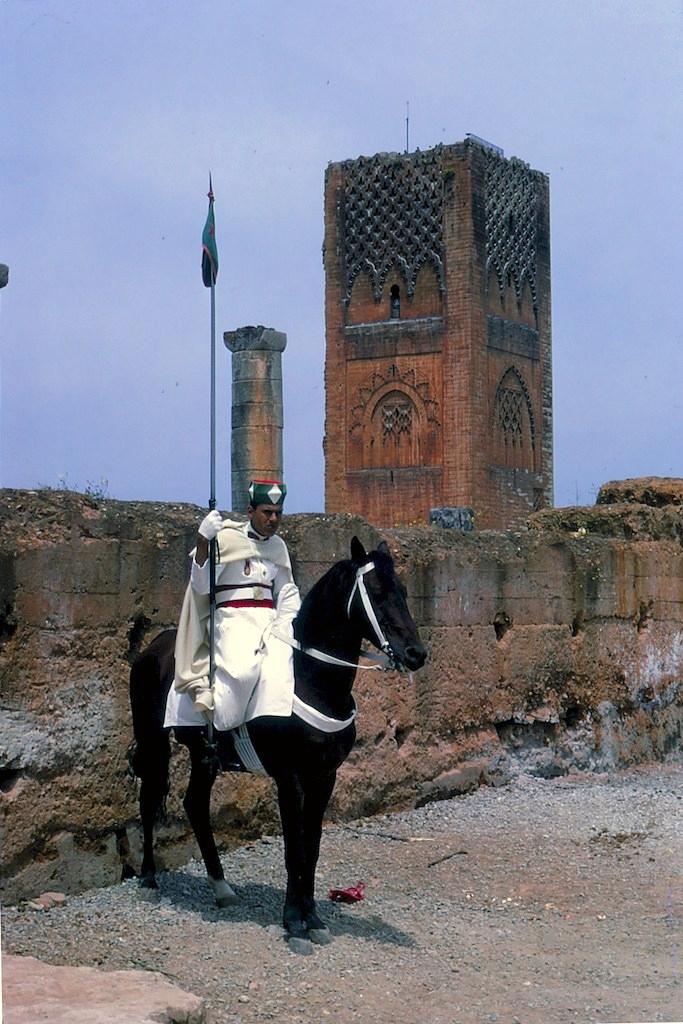 La Garde Royale Marocaine / Moroccan Royal Guard - Page 11 45227844555_abfa9696e3_o