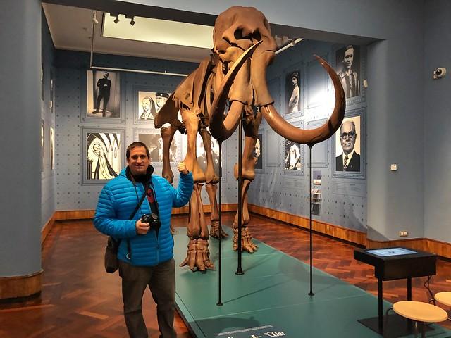 Sele en el Museo de Lier (Flandes)