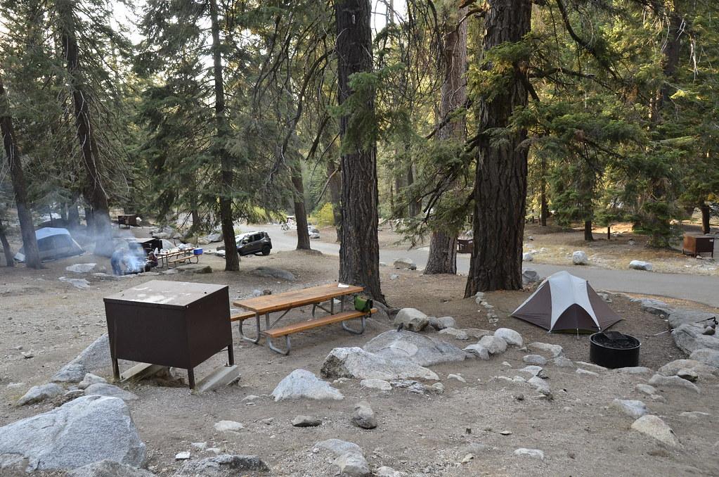 世界爺國家公園的Lodgepole Campground,在樹林間非常天然的營地,每個營位錯落在林間,除了稍微整過的土壤地,沒有任何人工舖面。