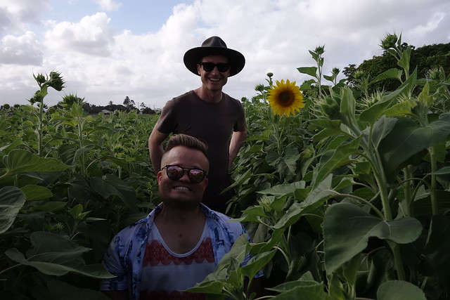 Jeremy Smith and Lucas in the sunflower and sugarcane crop at the Beacon