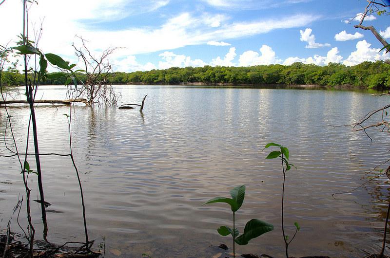 比塔河的瀉湖。Luis Alejandro Bernal Romero(CC BY-SA 2.0)