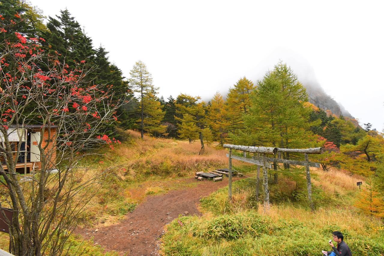 浅間山・火山館の紅葉
