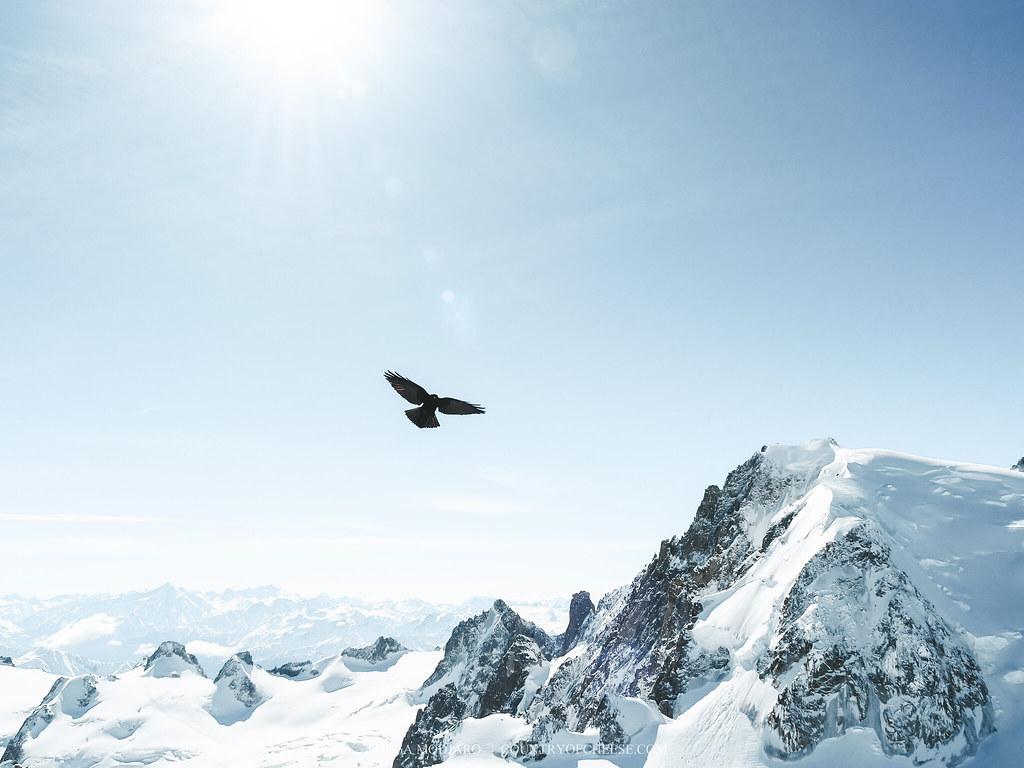 Шамони. Монблан. Невероятные кадры с Эгюий-дю-Миди (Aiguille du midi, Chamonix, Mont-Blanc) | countryofcheese.com