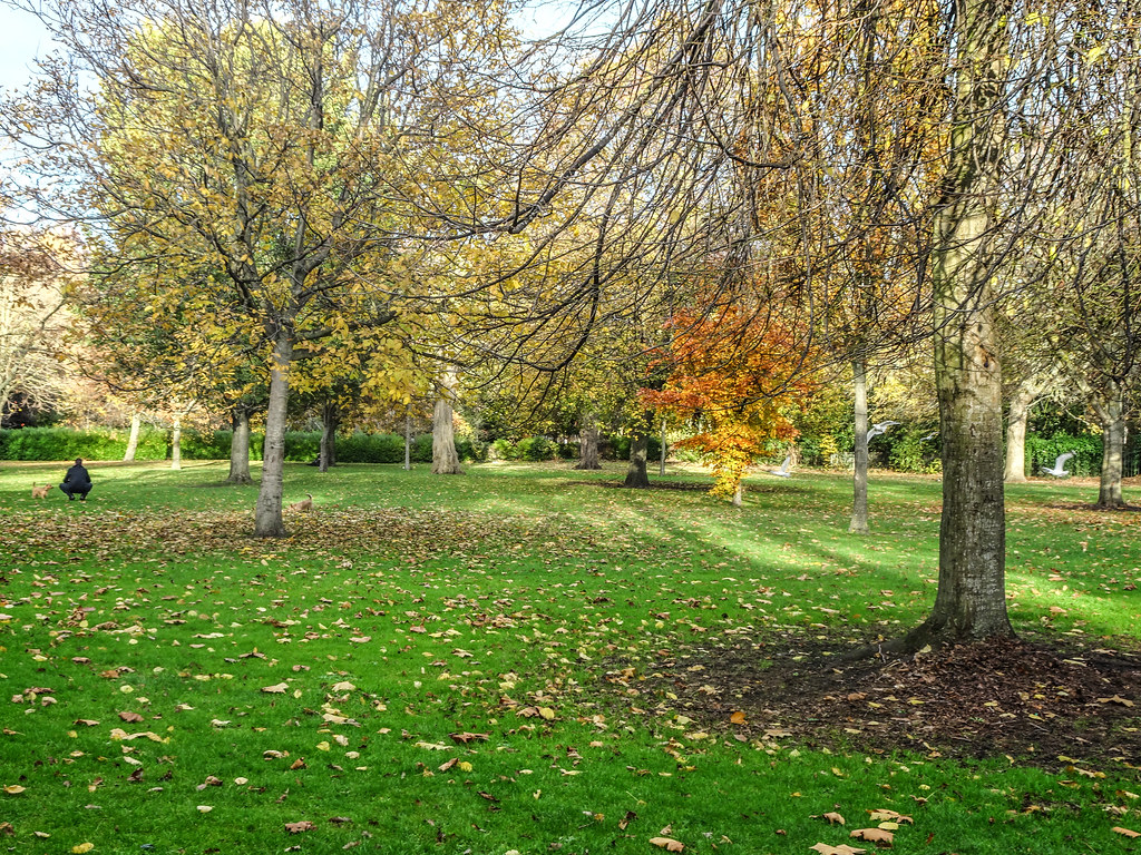 ST. STEPHEN'S GREEN IN AUTUMN 007