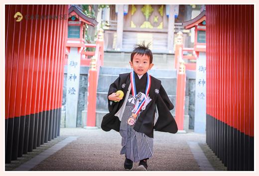 七五三 3歳の男の子と神社の赤い鳥居