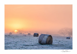Frosted Bales III | by George-Edwards