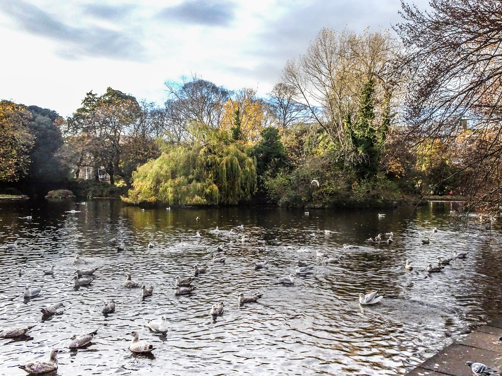 ST. STEPHEN'S GREEN IN AUTUMN 020