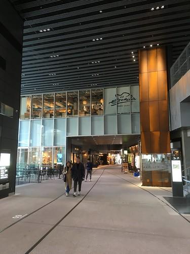 渋谷ストリーム 2018/11/3