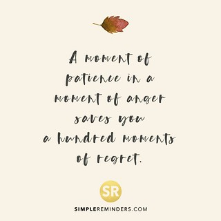 wisdom quotes unknown author moment patience anger saves flickr