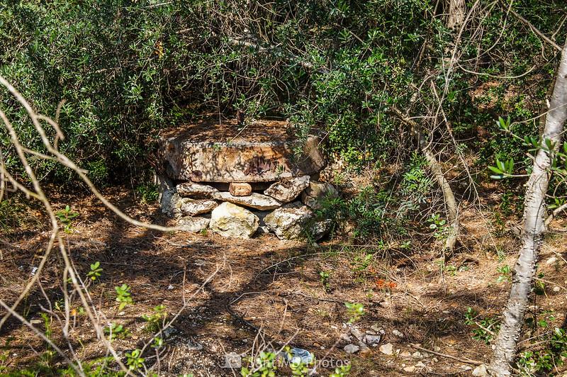 Pozo tapado en el Bosc de Les Comes
