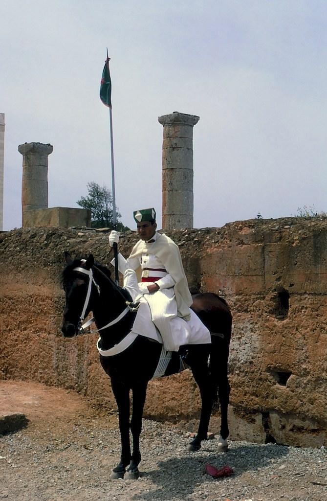 La Garde Royale Marocaine / Moroccan Royal Guard - Page 11 45227844495_f83a33b135_o