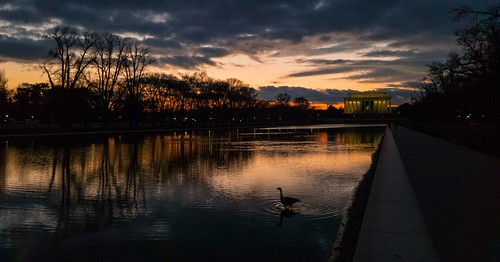 Sunset at the Reflecting Pool | by Beau Finley