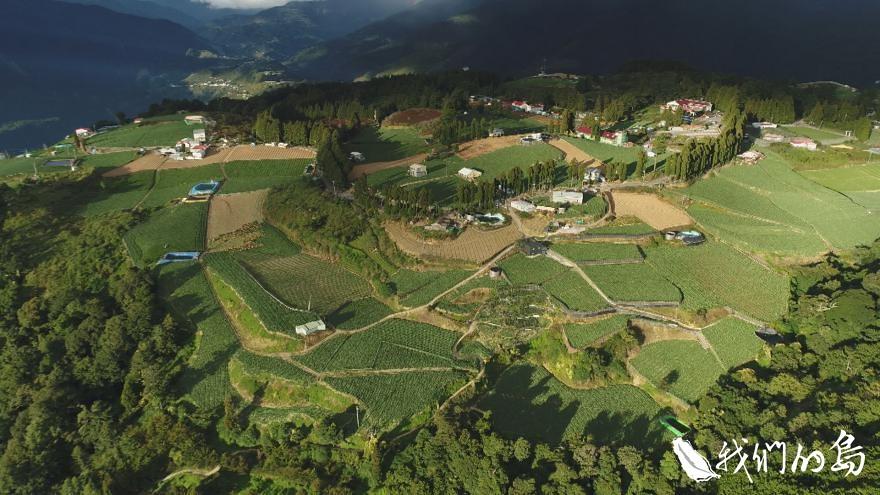 人們為了在山上討生活,帶著蘋果、水梨,茶樹、高麗菜攻城掠地。