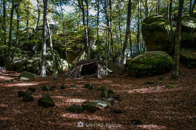 Fageda de les Roques Encantades