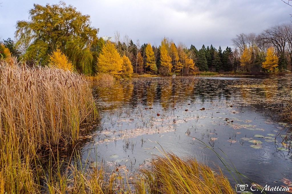 181107 28 Jardin Botanique De Montreal Quebec Canada Claude