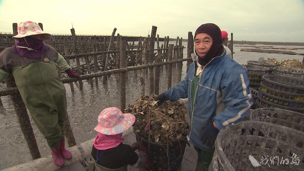 這片海同時孕育著豐饒的漁業資源,不過漁民、蚵農感嘆,收成一年不如一年。