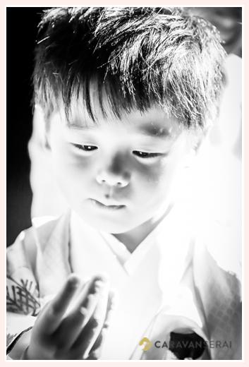 七五三 5歳の男の子 モノクロ