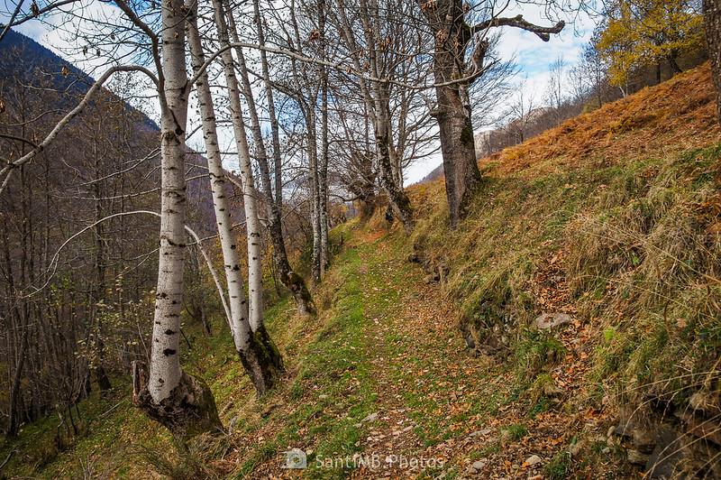 Camino de Eth Pradet
