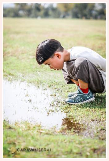 水たまりを覗き込む男の子