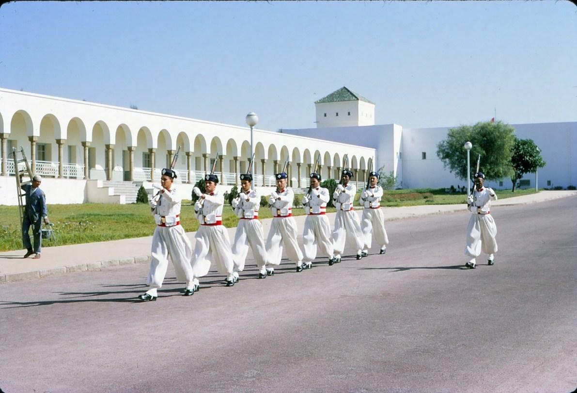 La Garde Royale Marocaine / Moroccan Royal Guard - Page 11 32268068208_28593066c2_o