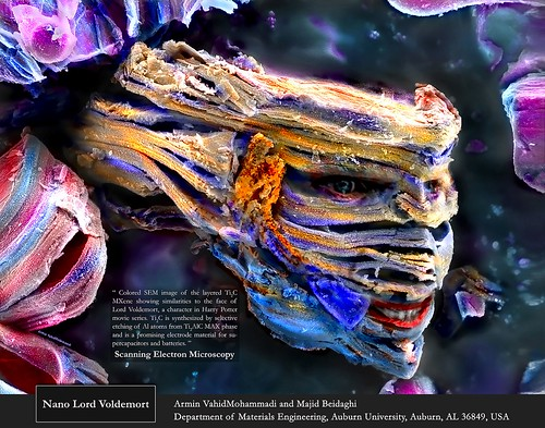 """""""Nano Lord Voldemort"""" resembles the evil wizard Lord Voldemort from the Harry Potter franchise."""