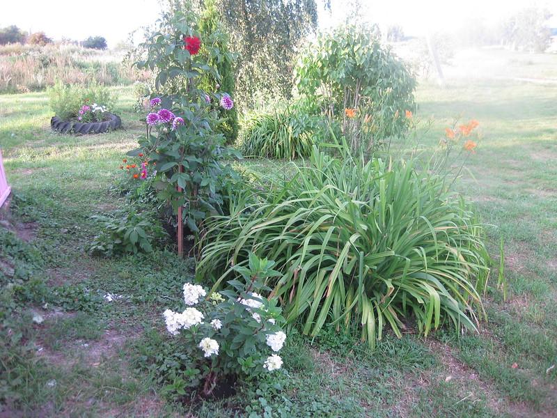 Цветочный уголок около дома