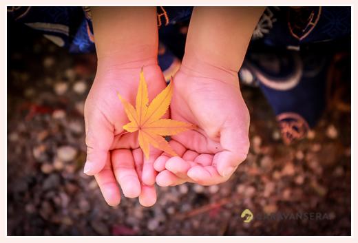 七五三 手のひらの上のモミジの葉