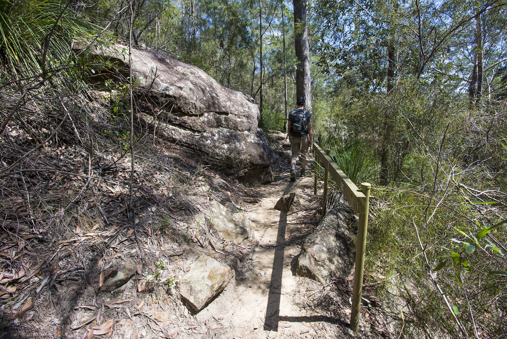 hand railing down blue gum walk path