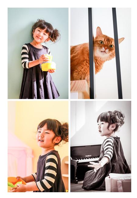 家族写真の出張撮影 愛知県瀬戸市 3歳の女の子とネコ