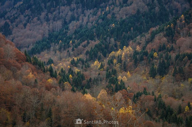 Otoño en la Val de Toran