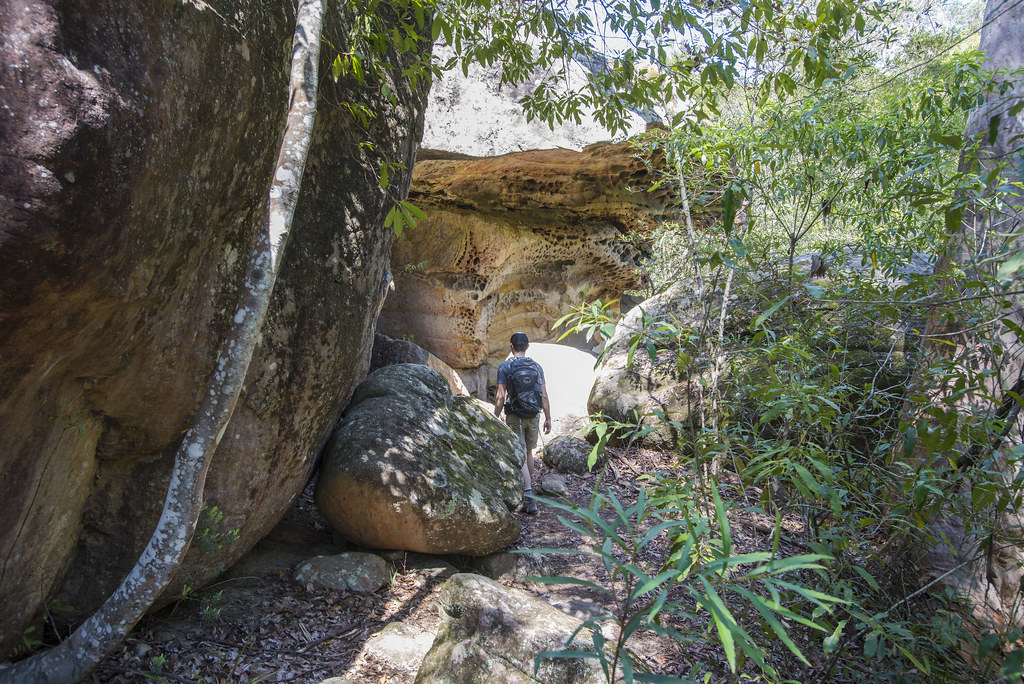 rock overhang Blue Gum Walk hornsby