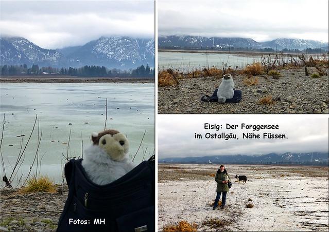 Winter 2018/2019 - Winterliche Wohnmobilreise mit Margit und Karla Kunstwadl ... Füssen, Bad Hindelang, Bad Schussenried --- Fotos: Margit H