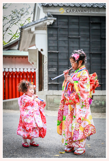 華やかな女の子二人(姉妹)の七五三 挙母神社(愛知県豊田市)