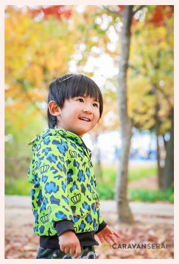 秋の紅葉 落ち葉で遊ぶ男の子