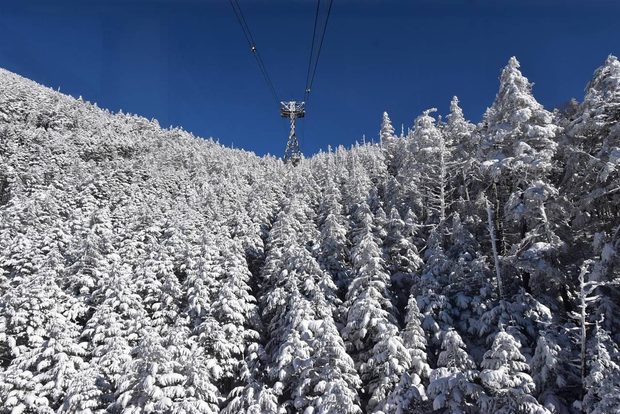 北八ヶ岳ロープウェイからの樹氷風景