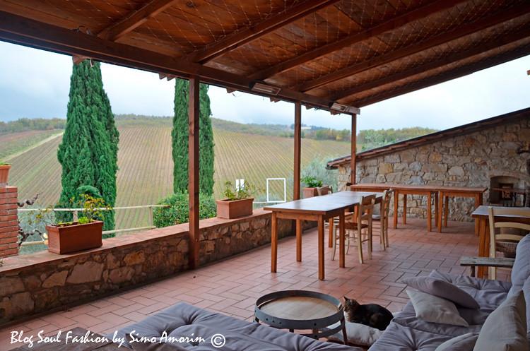 Detalhe do terraço externo a recepção onde durante ap primavera e o verão são servidas as refeições e também onde podemos degustar dos vinhos da Querceto apreciando o lindo panorama da vinícola toscana