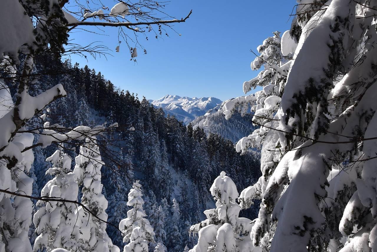 樹氷の合間から見える乗鞍岳