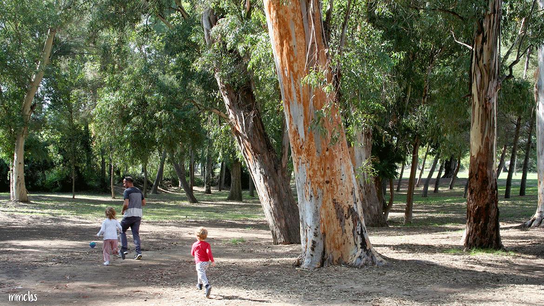 Parque San Vicente de Liria en familia, ¡planazo!