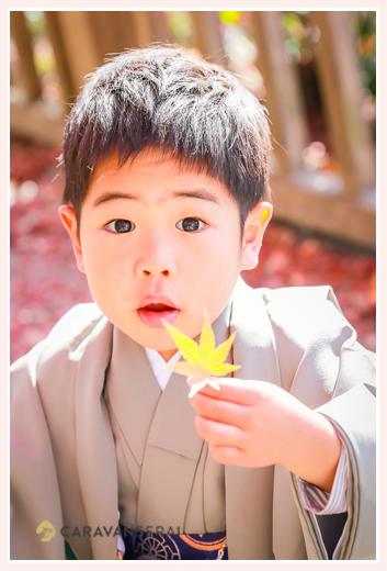 七五三 モミジの葉を持つ3歳の男の子