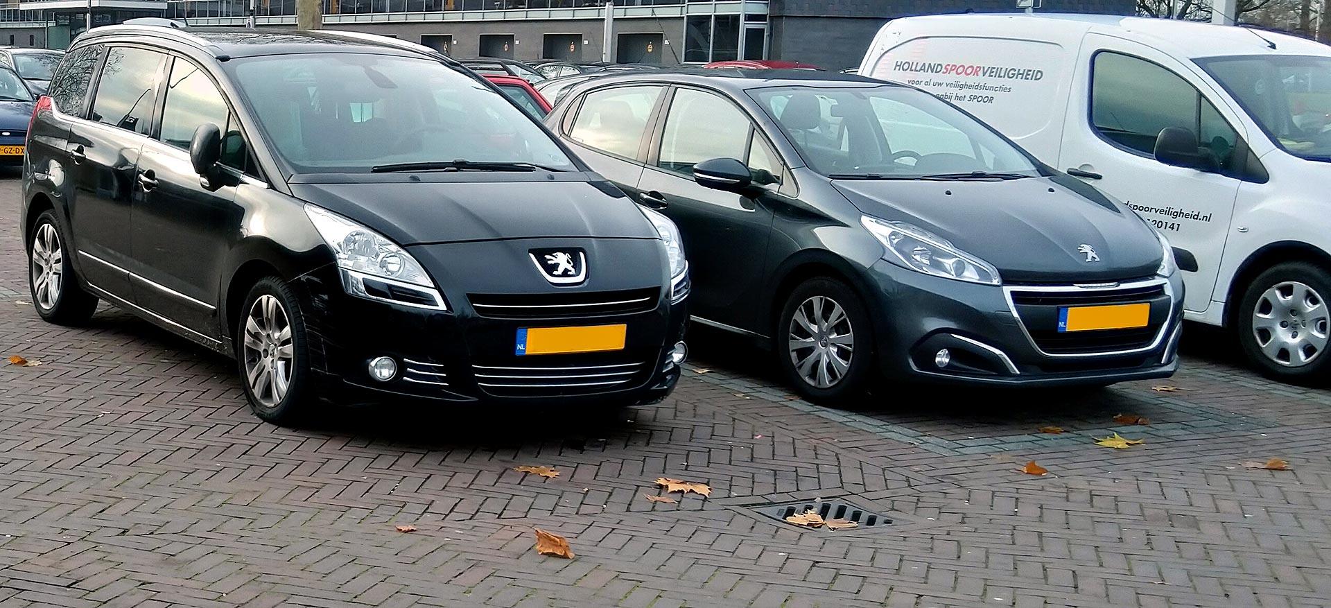 parkeren Werefreidplein