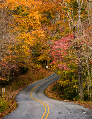 Road To Autumn | by Paul Cory